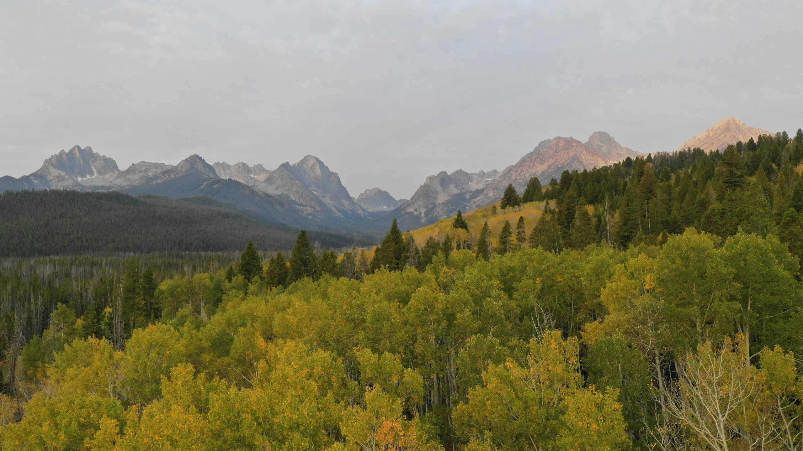 top view of mountains and forest